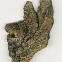 bark-angel-wing