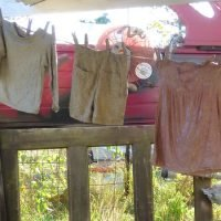 on-the-clothesline-1-crop